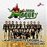 Banda Maguey Te Lavaste La Cara, El Mono No