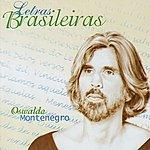 Oswaldo Montenegro Letras Brasileras