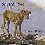 Maria Daines Shelter Me