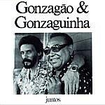 Luiz Gonzaga Juntos