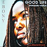 Ebony Good Life (Everybody Wants It)