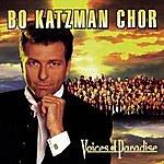 Bo Katzman Chor Voices Of Paradise