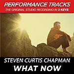 Steven Curtis Chapman What Now (Premiere Performance Plus Track)