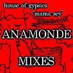 Todd Terry Mama Sey - Franco Anamonde Mixes