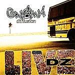 Gnawa Diffusion Live Dz