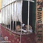 Funkdawgs A Dawg's Life