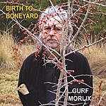 Gurf Morlix Birth To Boneyard