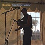 Peter Puma Hedlund Resonans