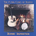 Flying Cows Of Ventry Bovine Inspiration