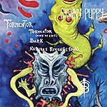 Skinny Puppy Tormentor (3-Track Maxi-Single)