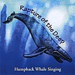 Paul Knapp Jr. Rapture Of The Deep - Humpback Whale Singing