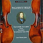 Salvatore Accardo Violin Recital: Accardo, Salvatore (Paganini's Violin - Salvatore Accardo Plays Paganini's Guarneri Del Gesu 1742)