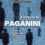 Marco Pasini Piano Recital: Pasini, Marco - Hummel, J.n. / Moscheles, I. / Kuhlau, F. / Liszt, F. / Busoni, F. / Dallapiccola, L. (A Tribute To Paganini)