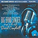 Studio Musicians Big Band Singer - Style Of David Campbell