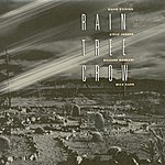 Rain Tree Crow Rain Tree Crow