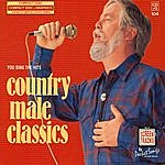 Studio Musicians Hits Of Country Male Classics
