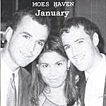Moes Haven January