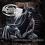 Falconer Among Beggars And Thieves