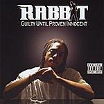 The Rabbit Guilty Until Proven Innocent