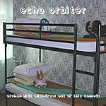 The Echo Orbiter Orphan Kids Withdrawn Out Of This Comedy