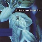Princes of Babylon Morphology