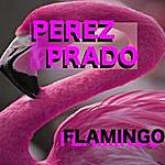 Pérez Prado Flamingo