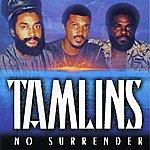 The Tamlins No Surrender