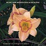 Elizabeth Farr Music For Meditation & Healing