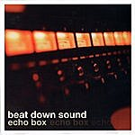 Beat Down Sound Echo Box