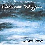 Andres Condon Caminos Del Agua
