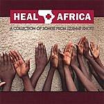 Lizanne Knott Heal Africa