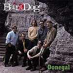 Hair Of The Dog Donegal