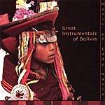 Sukay Great Instrumentals Of Bolivia