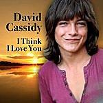 David Cassidy I Think I Love You