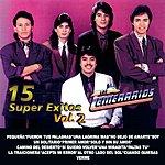 Los Temerarios 15 Super Exitos Vol. 2 (U.S. Version)
