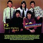 Los Temerarios 15 Super Exitos Vol. I (U.S. Version)