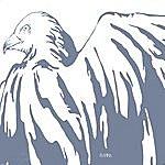 Sarah Fimm White Birds