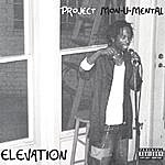 Elevation Project Monumental