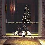 Wayne Kerr Waiting For Christmas