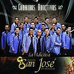 Banda San Jose De Mesillas Corridos Adictivos