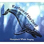 Paul Knapp Jr. Rapture Of The Deep - Humpback Whale Singing (Remastered)