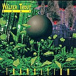Walter Trout Transition