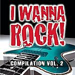 The Blood I Wanna Rock Compilation Vol. 2