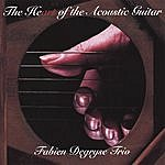 Fabien Degryse The Heart Of The Acoustic Guitar