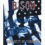 Bison Precincts Of Thought