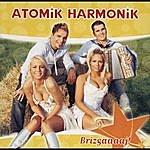 Atomik Harmonik Brizgaaaaj!