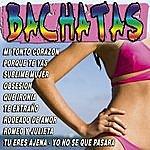 Grupo De Bachata Bachatas