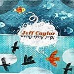 Jeff Caylor What Birds Dream