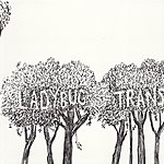 The Ladybug Transistor Here Comes The Rain