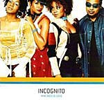 Incognito Who Needs Love